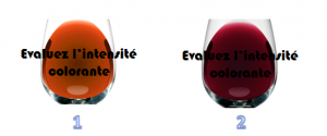evolution intensite du vin vieux