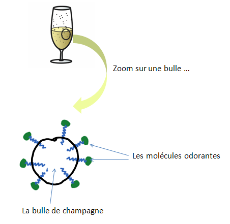 bulle champagne et arome