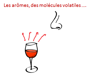 arome molecules
