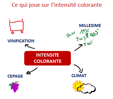 facteurs intensite colorante