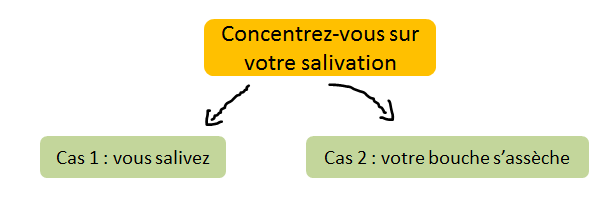 salivation en finale vin