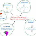 organisez vos degustations comparatives