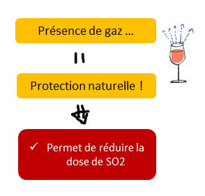 co2 et so2 vin