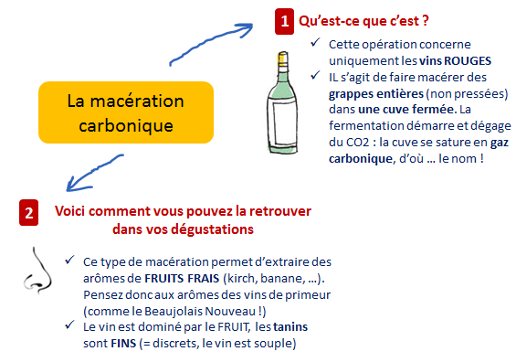 apport maceration carbonique