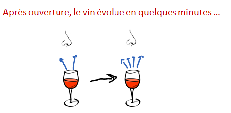 evolution vin verre