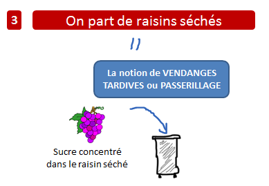 vin raisin seches