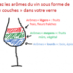 9 couches d'aromes verre vin