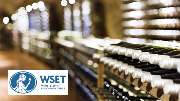 Diplome-Formation-Diplomante-WSET3-600x338-1